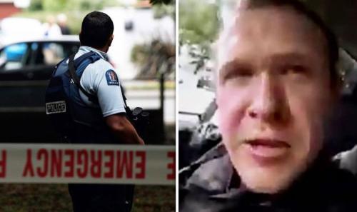 Kiwi-terror